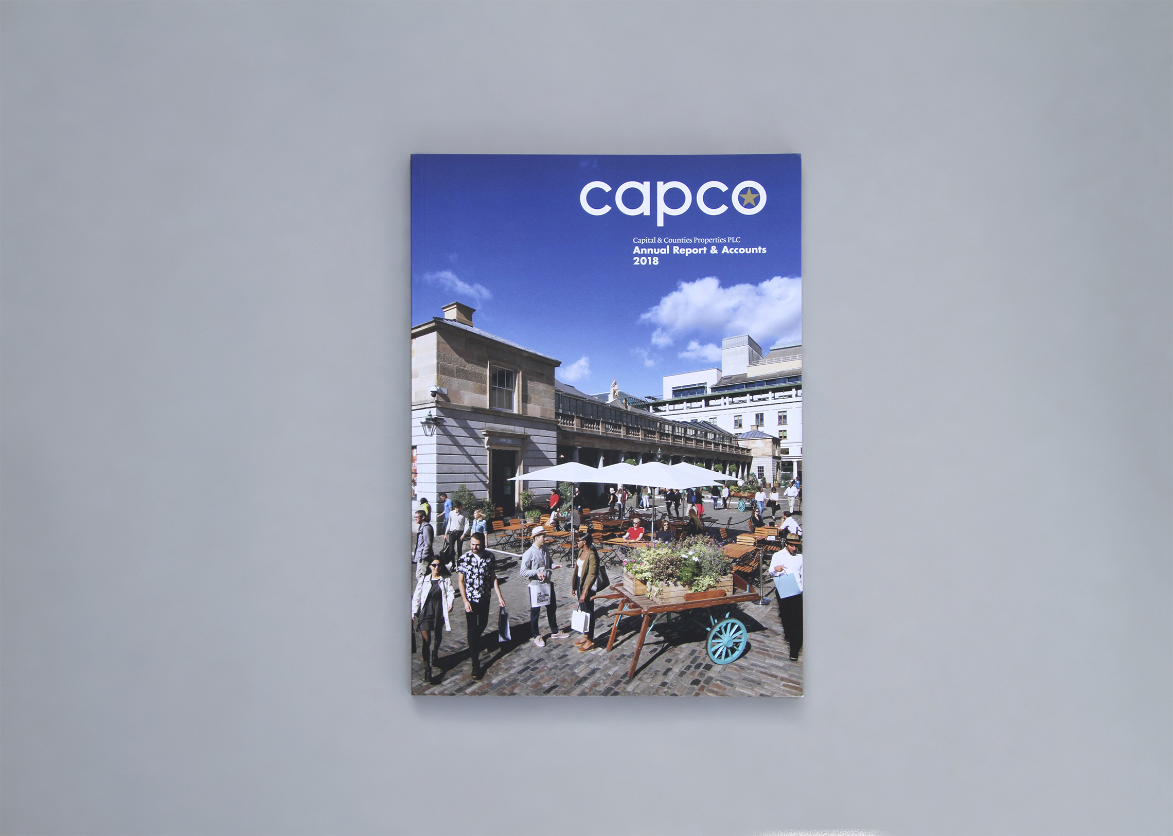 Capco property: annual report