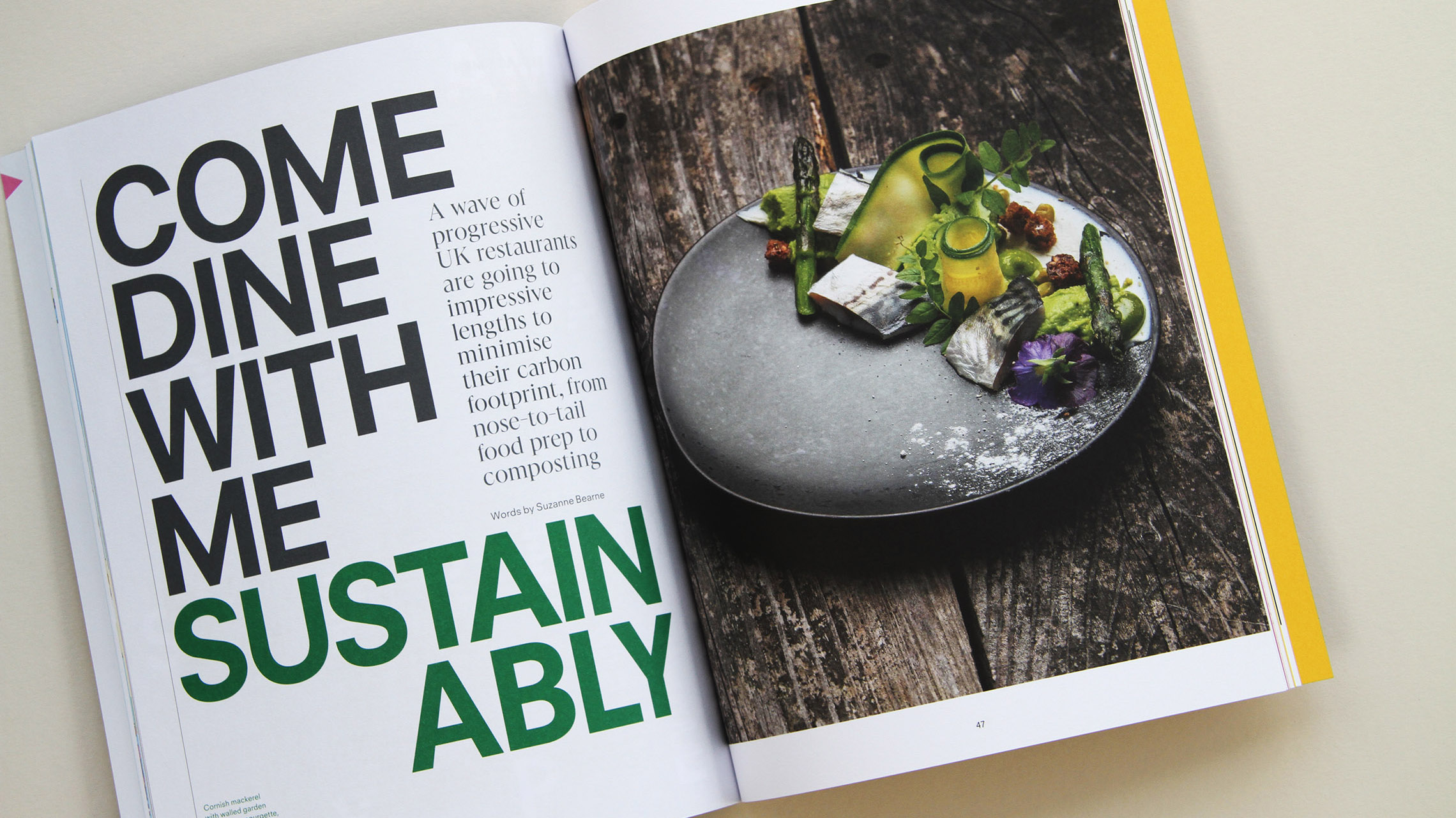 10 indie magazines tackling sustainability