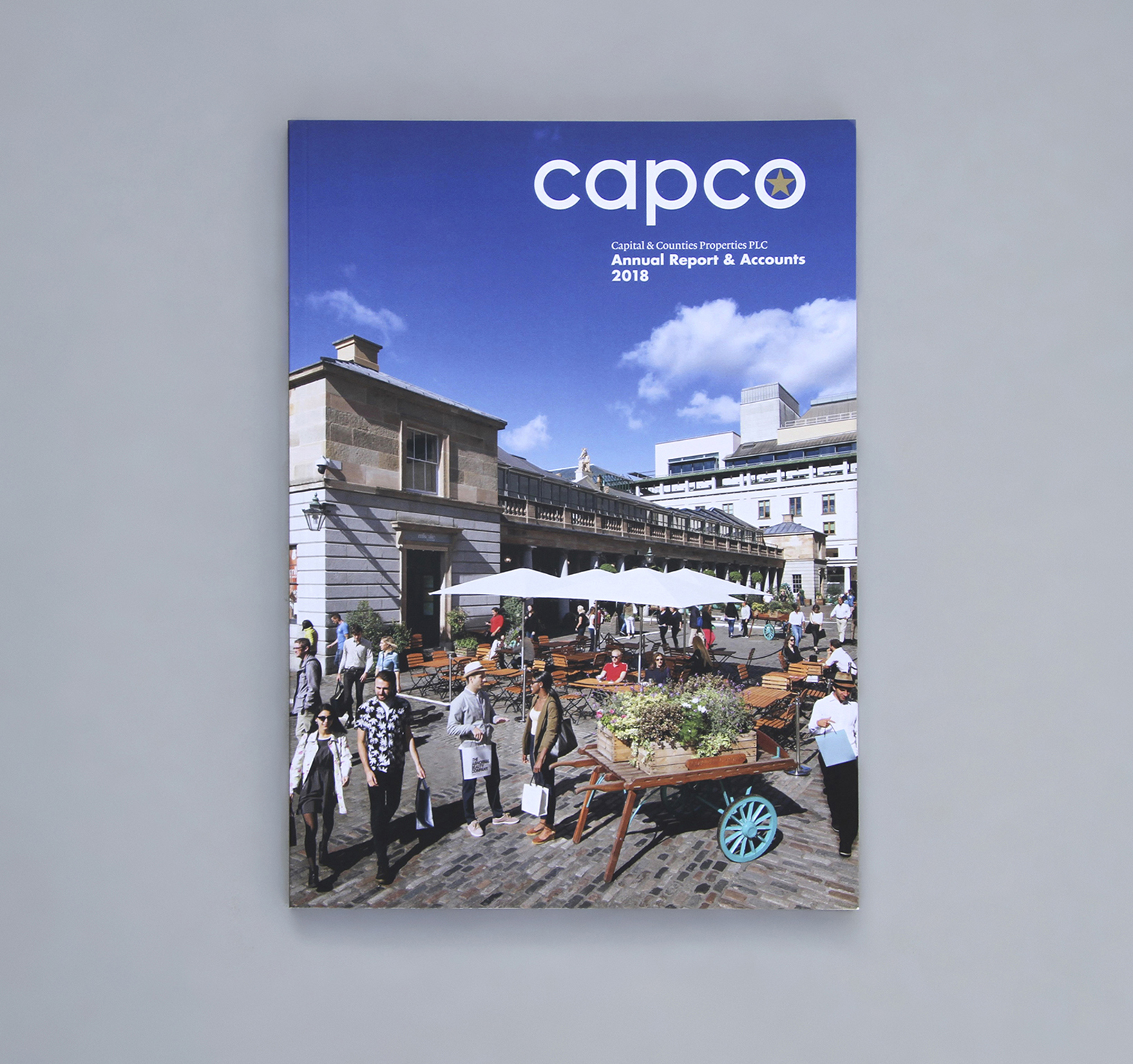 Capco property: annual report printing